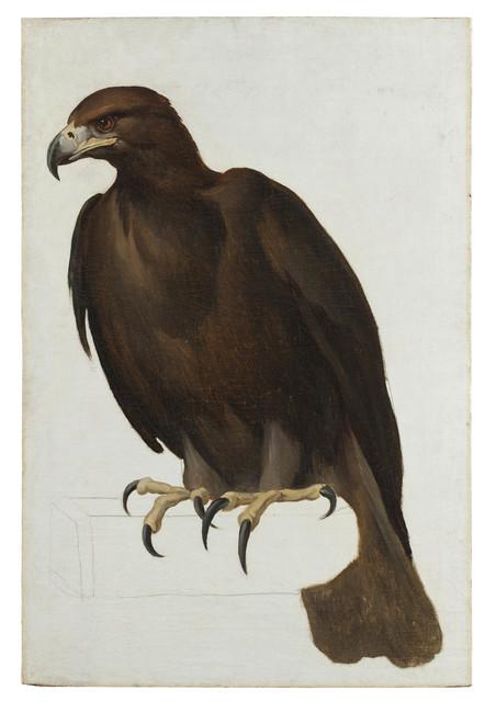 , 'Eagle,' ca. 1805-1807, Robilant + Voena