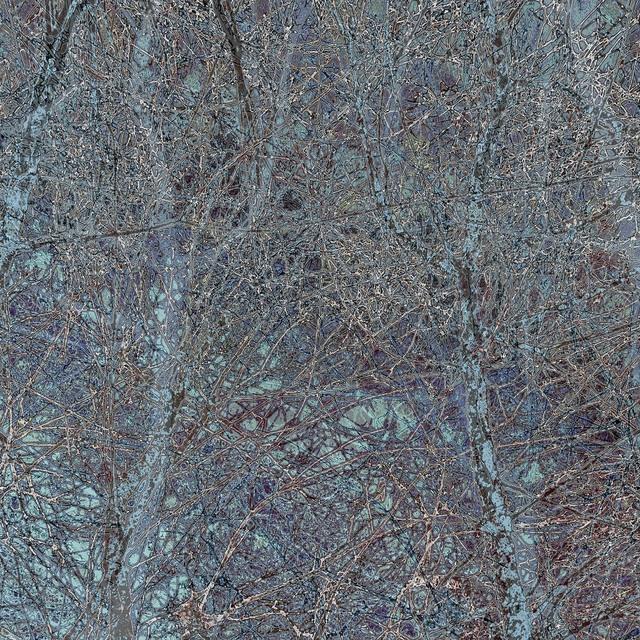 Gwen Laine, 'Topography Series (#4)', 2015, Michael Warren Contemporary