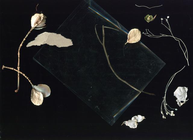 , 'Beauvoir (Series: Toute La Nuit),' 2015, A.I. Gallery