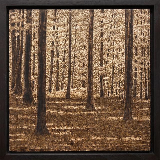 Paul Chojnowski, 'Shade in the Clearing ', 2019, George Billis Gallery