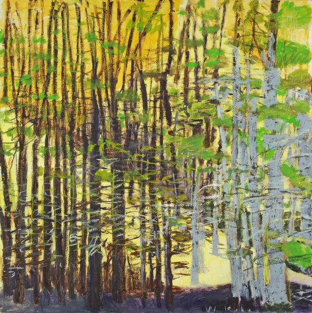 , 'Hidden Slope,' 2015, Addison/Ripley Fine Art