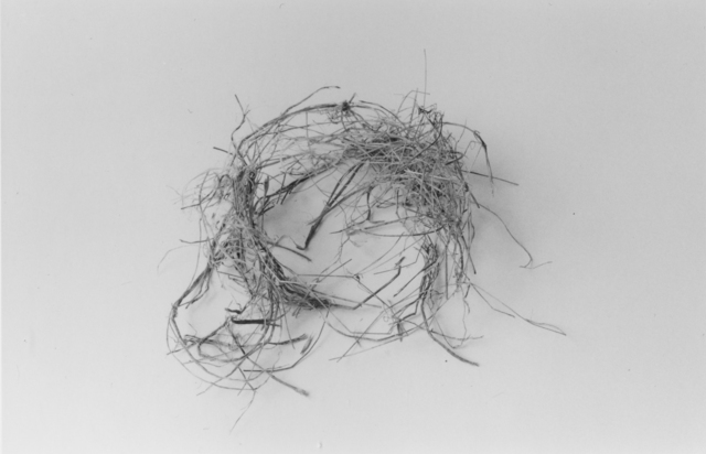 , 'The End (Nest Four),' 1999, John Davis Gallery