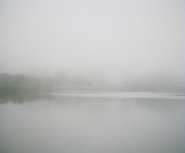 , 'Fog, Silvermine, South Africa,' 2012, Francesca Maffeo Gallery
