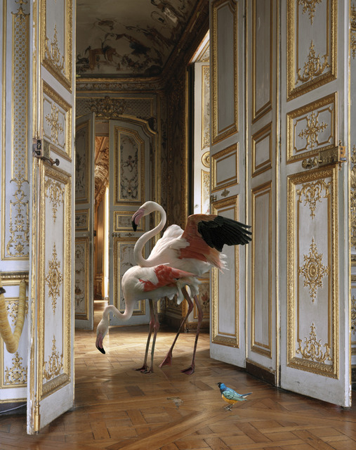 """, 'The Grand Monkey Room (2).From the series """"Fables"""",' 2006, Danziger Gallery"""