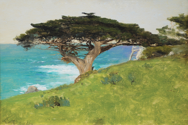 , 'Point Lobos, Veteran Tree (Monterey),' 29, Sullivan Goss