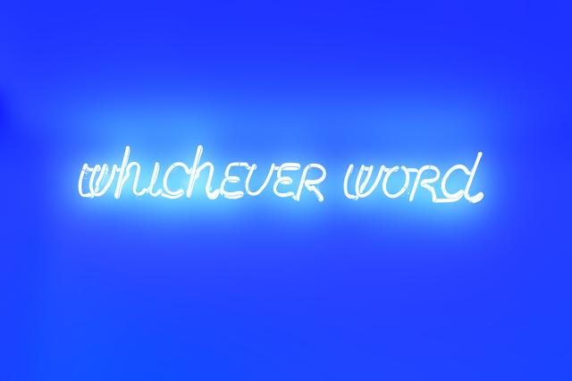 , 'whichever word,' 2012, mfc - michèle didier
