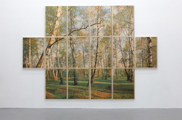 , 'Forest near Moscow,' 2017, Osnova Gallery