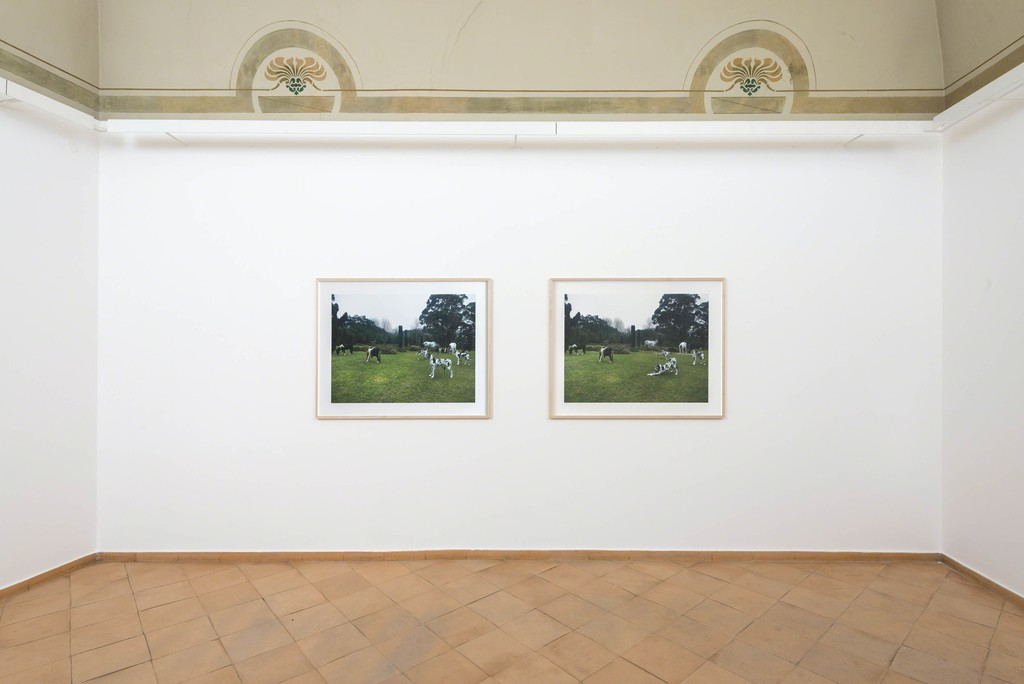 Bethan Huws - installation view