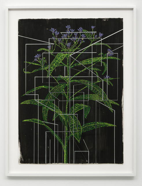 , 'Studies of Line, Color, and Plants #7,' 2017, Lora Reynolds Gallery