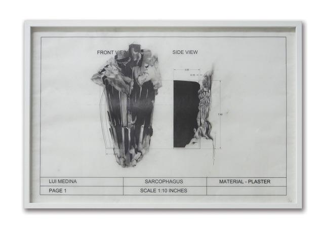 , 'Untitled (Natural History 5),' 2013, Artinformal