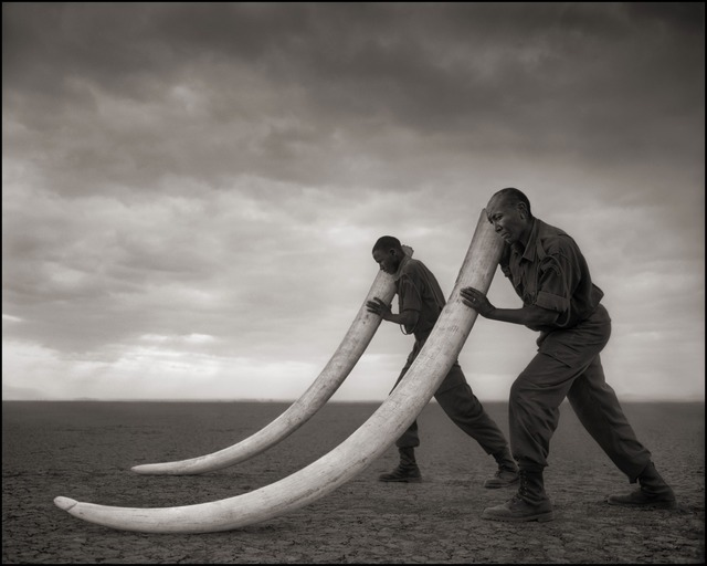 Nick Brandt, 'Two Rangers with Tusks of Killed Elephant, Amboseli 2011', 2011, Photography, Archival Pigment Ink Print, photo-eye Gallery