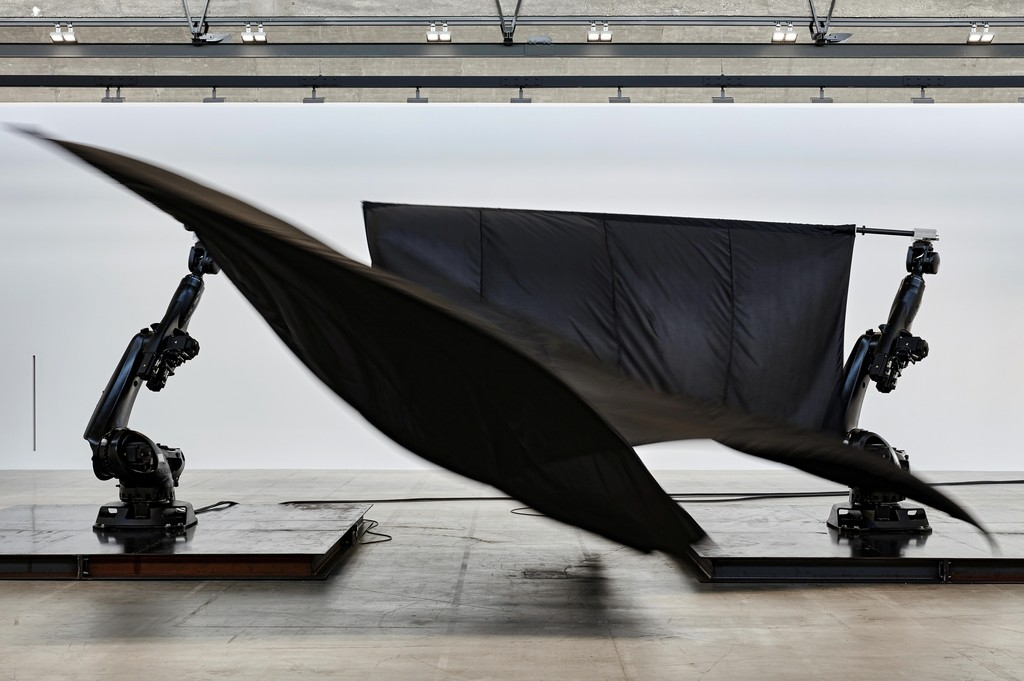 Black Flags, 2014