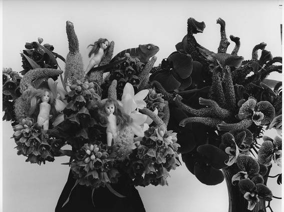 Nobuyoshi Araki, 'Paradise 2', 2013, Photography, Michael Hoppen Gallery