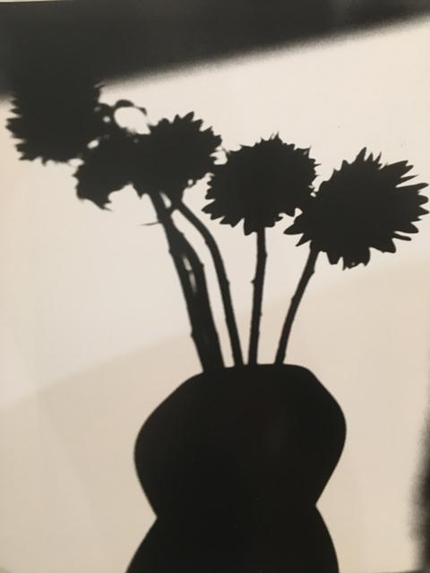 , 'Before the Details 5,' 2016, Morgan Lehman Gallery