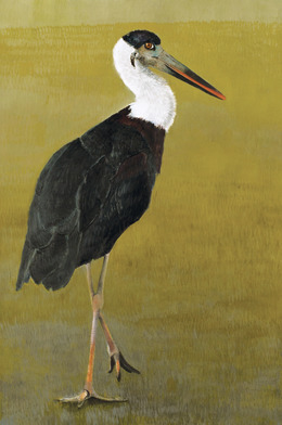 , 'Woollynecked Stork,' 2012, Walter Wickiser Gallery