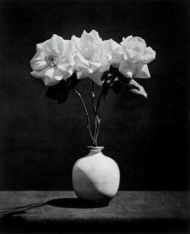 , 'ROSE,' 1983, Pepe Cobo