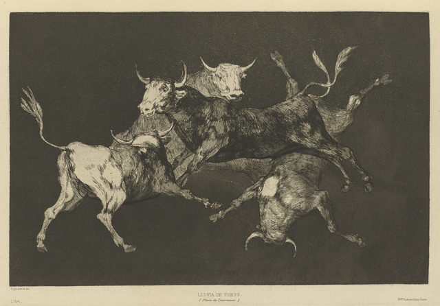 , 'Disparate de tontos [or Toritos] [Fools'—or Little Bulls'—Folly],' 1816-1819, Blanton Museum of Art