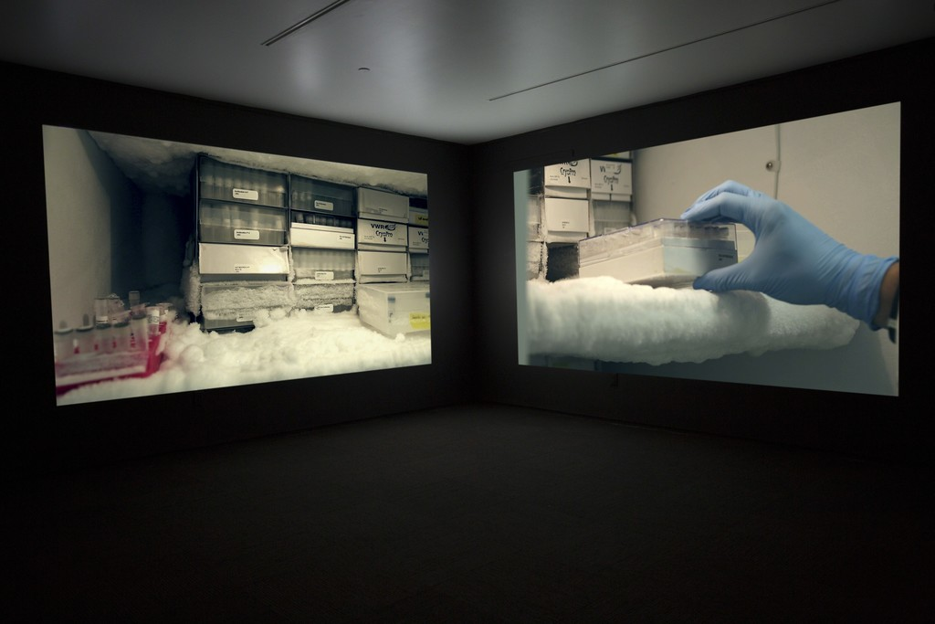 JANET BIGGS The Persistence of Hope (video still) 2015, two-channel high definition video installation (sound, color), run time: 7:24.   With Arctic footage from Katja Aglert's Winter Event-antifreeze, 2009 (filmed by Janet Biggs).