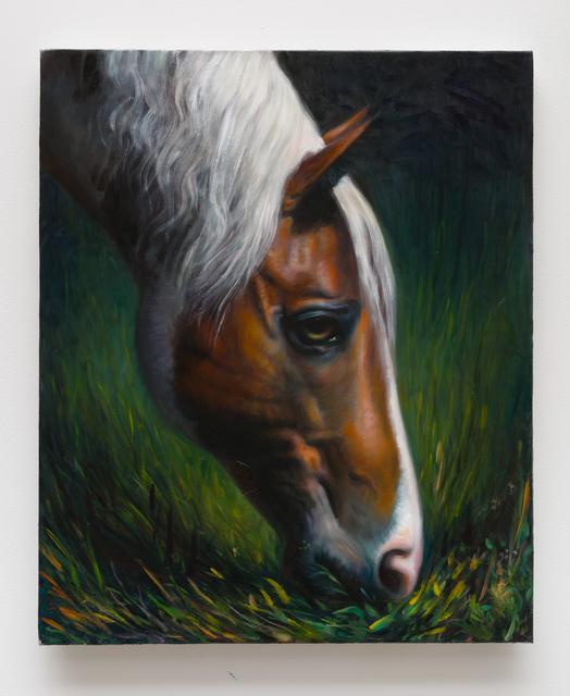 , 'horse (xoxx),' 2016, CFHILL