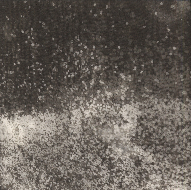 , 'Star Dust III,' 2014, photo-eye Gallery