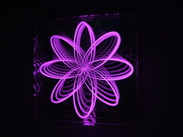 , 'Organic Orbit (Flower), Curved, Right Corner,' 2012, De Buck Gallery