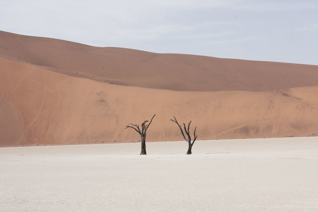 , 'Death Valley, Namibia,' 2015, Robert Mann Gallery