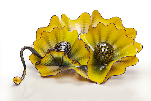 Dale Chihuly, 'Mineral Yellow Persian Set with Cobalt Lip Wraps', 2016, Schantz Galleries