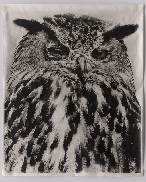 , 'Owl V,' 2009, Mary Ryan Gallery, Inc