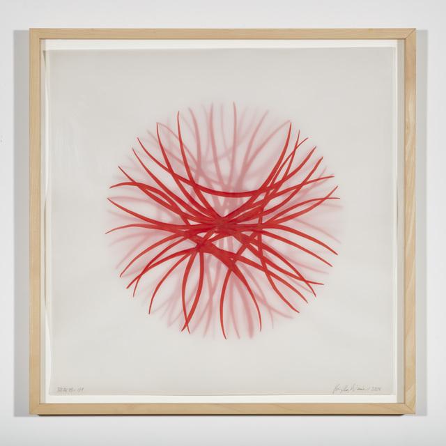 , 'Morphogenesis sketch,' 2004, Galerie Judith Andreae