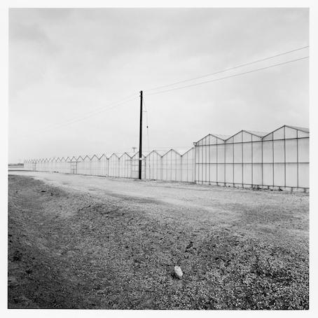 Paul Hart, 'Park Lane', 2014, The Photographers' Gallery   Print Sales