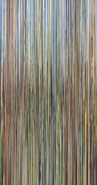 , 'Conelrad v15,' 2016, C. Grimaldis Gallery
