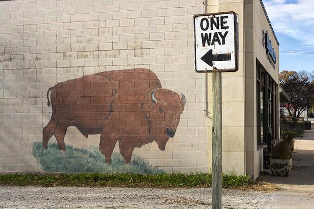 , 'Buffalo, Council Grove, KS,' , Soho Photo Gallery
