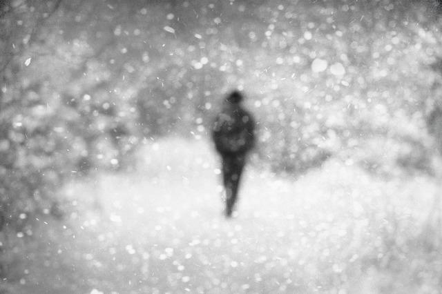, 'In the Snow IX,' 2010, Galleria Doris Ghetta