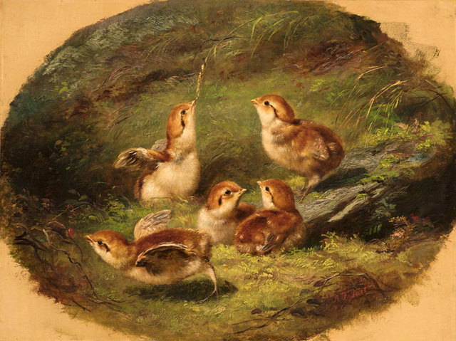 , 'Young Ruffed Grouse,' 1858, Godel & Co.