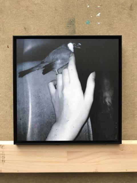 , 'Untitled / Kleiner Vogel, 01/12,' 2017, contemp-rent