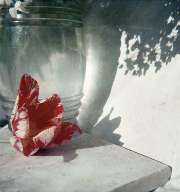 Jacques Henri Lartigue, 'Opio', 1963, °CLAIR Galerie