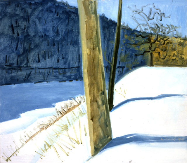 Lois Dodd, 'Water Gap Shadow', 1994, Painting, Oil on Masonite, Alexandre Gallery