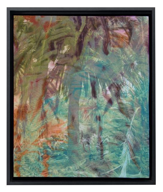 , 'Palm Trees,' 2008-2013, KM