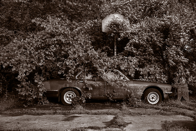 Gary Beeber, 'Abandoned Jaguar', 2019, Photography, Archival Inkjet print, Los Angeles Center of Photography