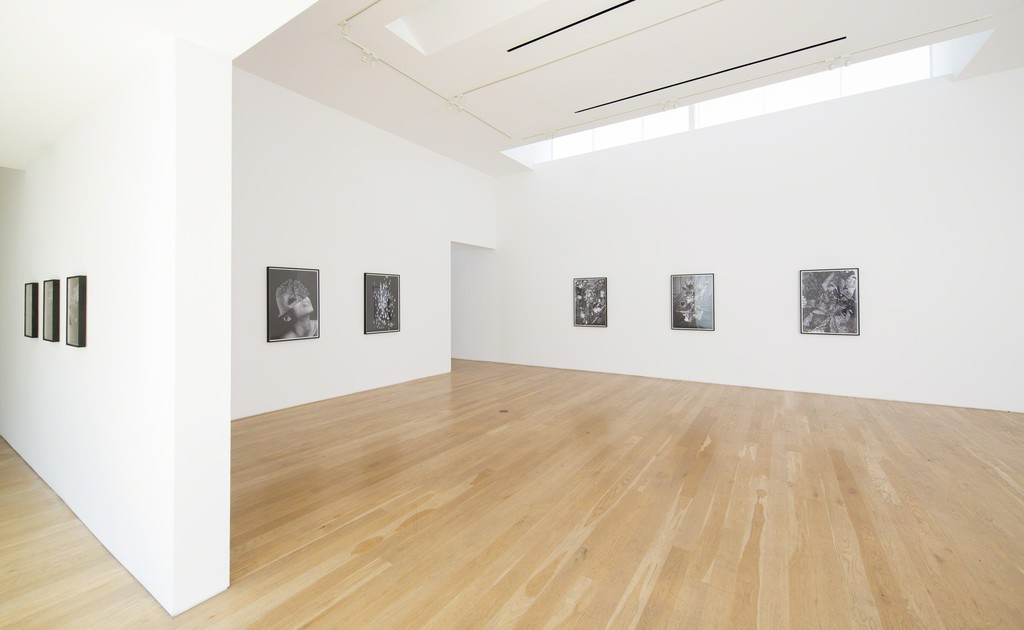 "Installation view of Fay Ray ""Part Object"" 2014."