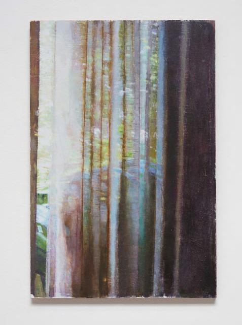 , 'Casa de Vidro 11 ,' 2011-2012, Galeria Luisa Strina