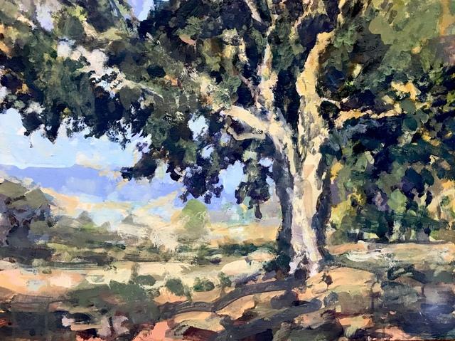 , 'Dramatic Shade Montecito,' 2018, Pauline Johnson-Brown