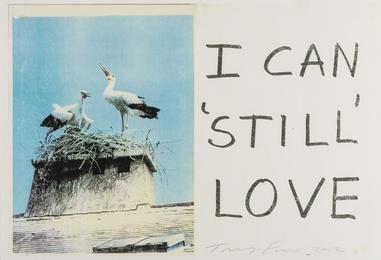 I Can 'Still' Love; Faithful To My Dreams