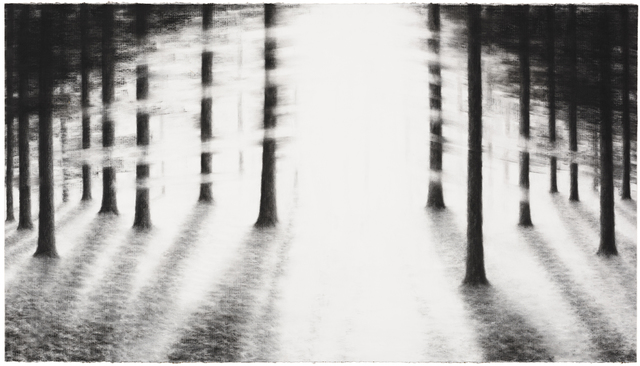 , 'Into the trees IV,' 2016, Livingstone gallery THE HAGUE/BERLIN