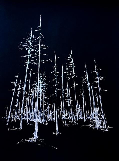 , 'Cinders/Trees, Oregon 2,' 2019, Marloe Gallery