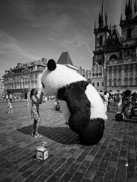 , 'XG2018001CZ,' 2018, Amy Li Gallery