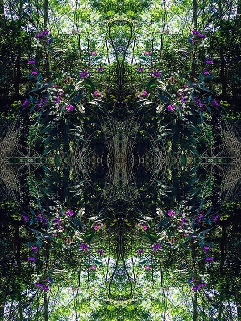 , 'Purple Flowers,' 2017, Agora Gallery