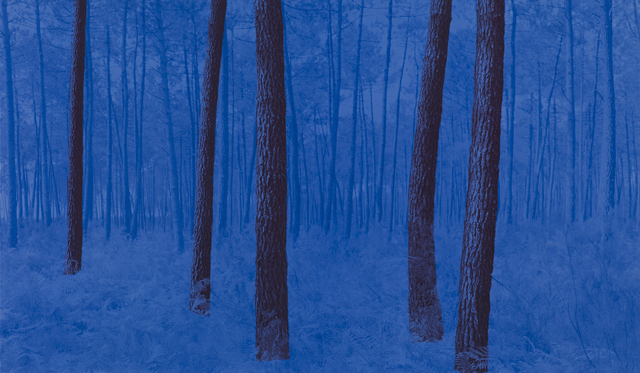 , 'France 103 BRB,' 2013-2016, L. Parker Stephenson Photographs