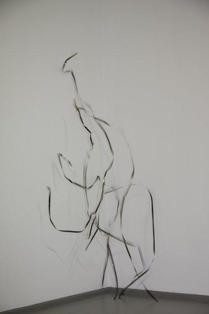 Zilvinas Kempinas, 'Serpentine', 2010, Galerija VARTAI