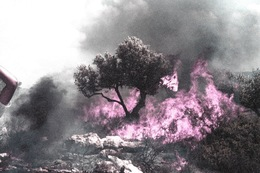 Oded Yedaya, 'Pink Fire', 2009-2012, Contemporary by Golconda